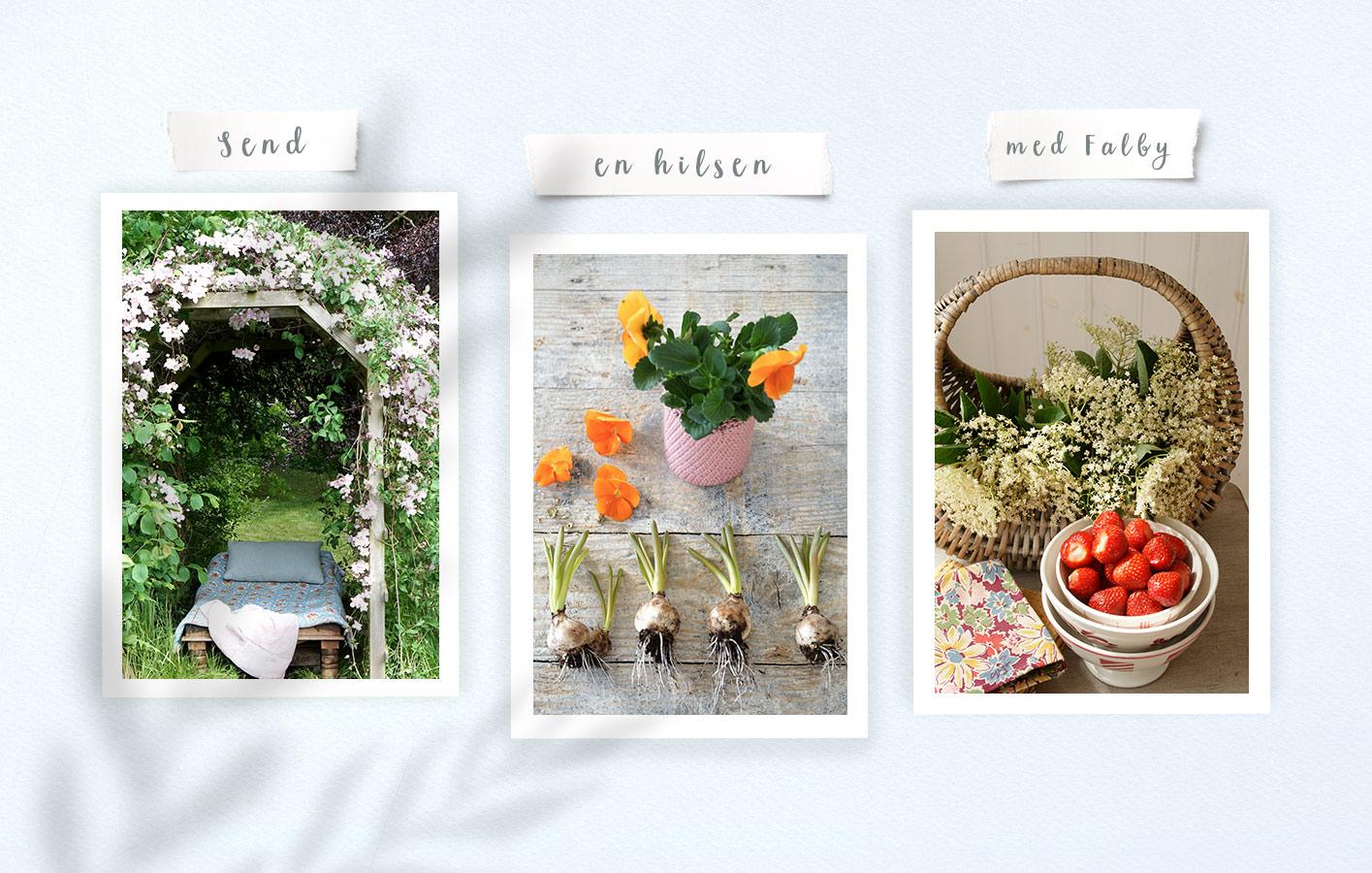 Send en online hilsen - Falby Design